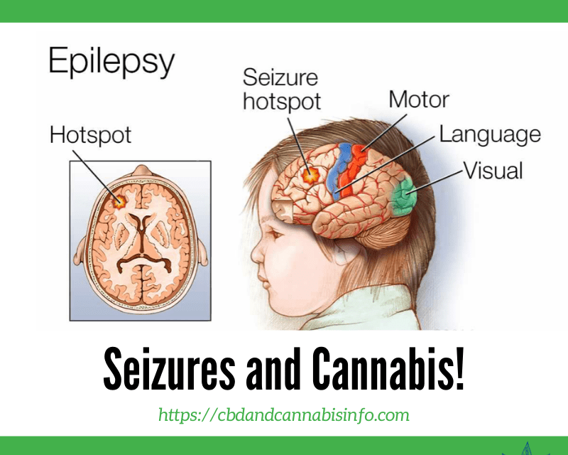 Dravet Syndrome Seizures and Cannabis!*